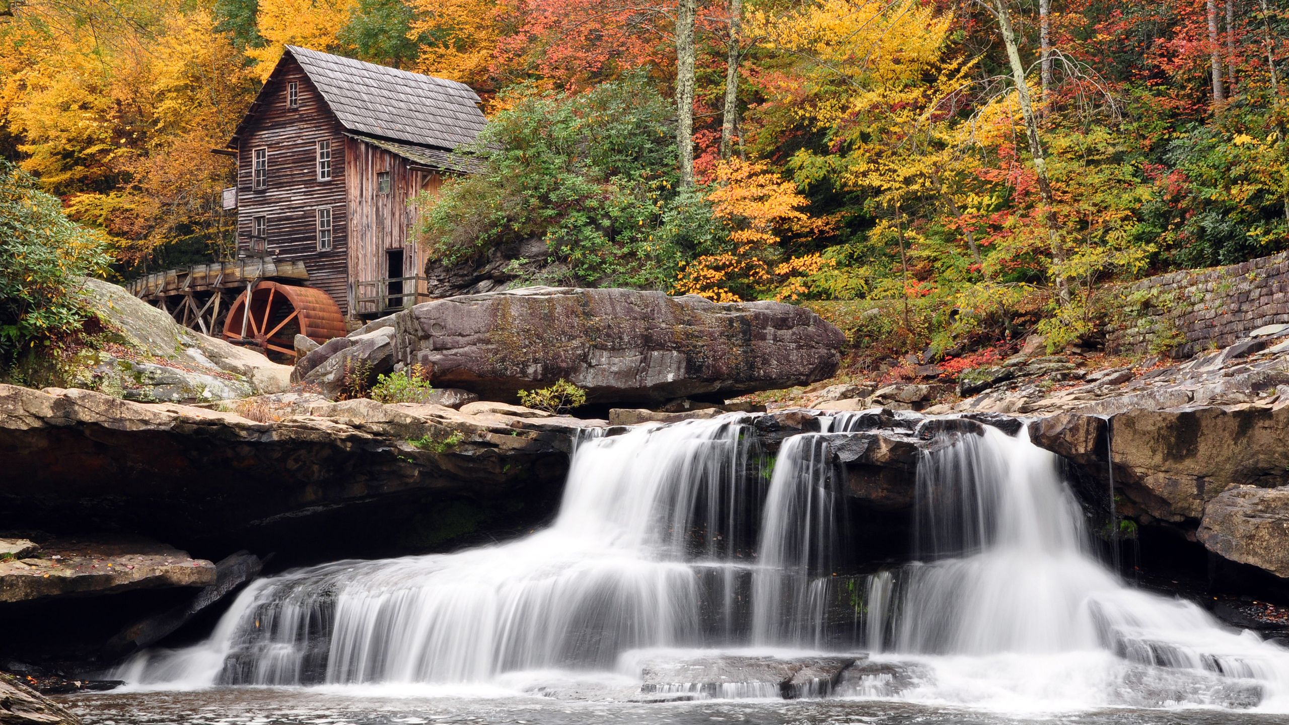 autumnjpg.jpg