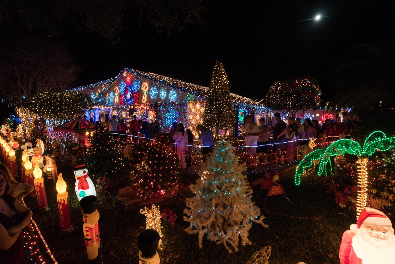 Christmas 2015-1500px-13.jpg