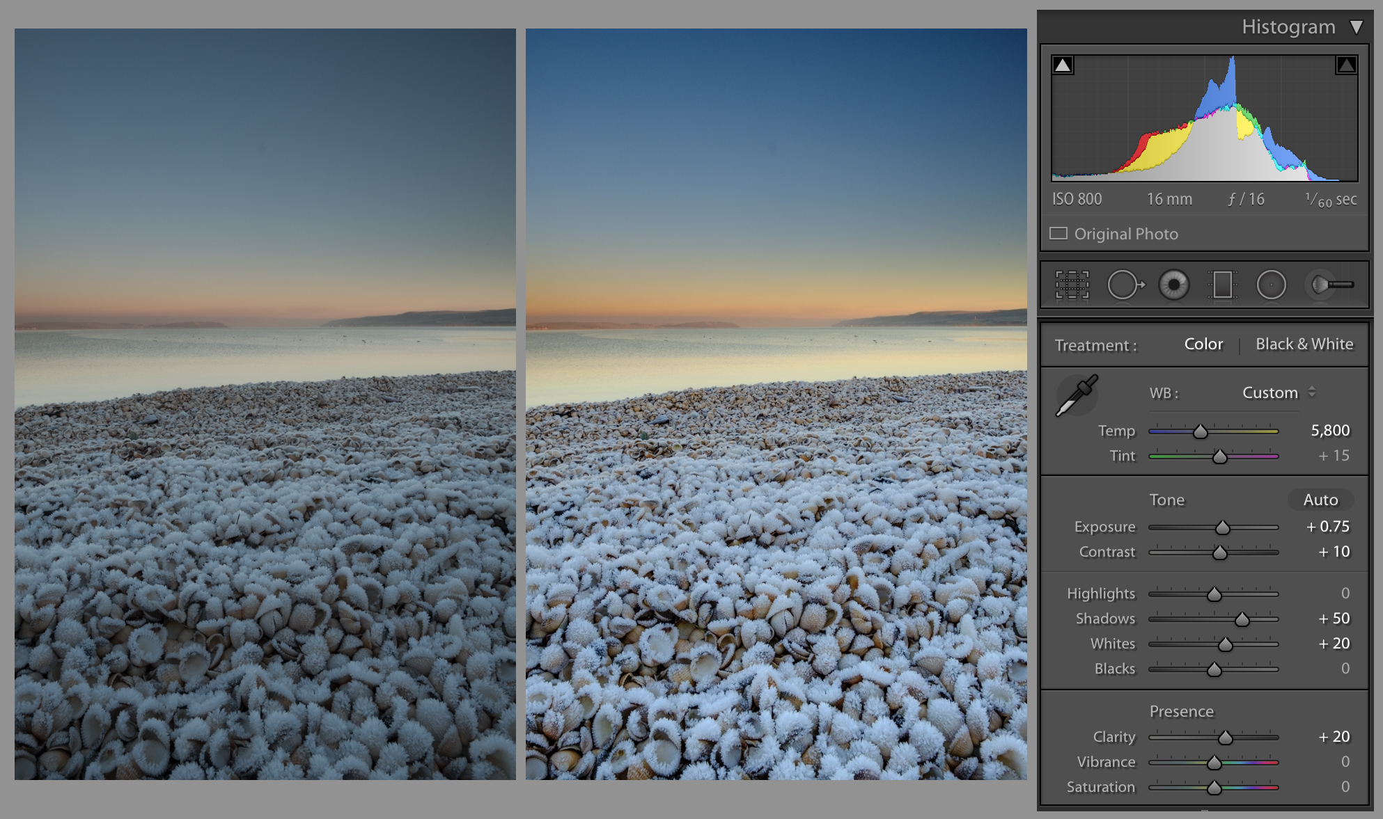 Cockle Shore Edits.jpg