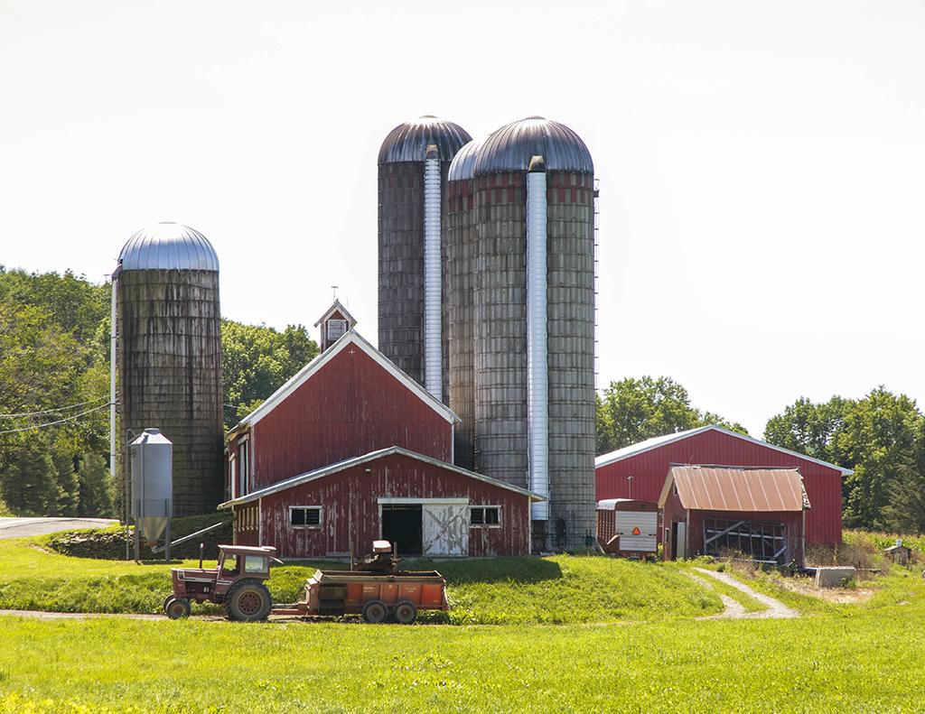 farm21024.jpg