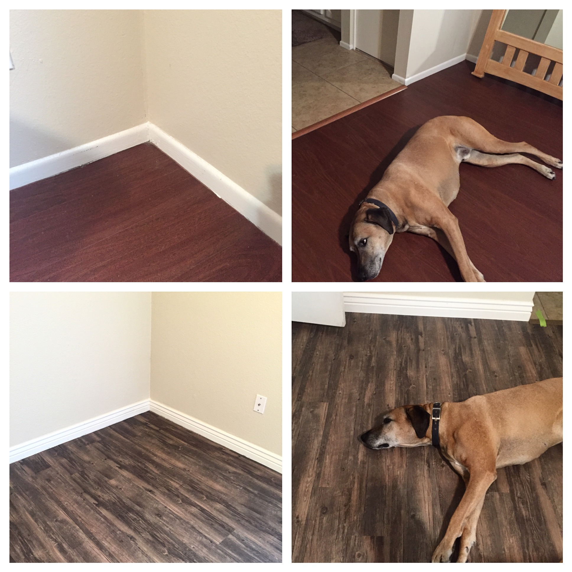 flooring1.jpeg