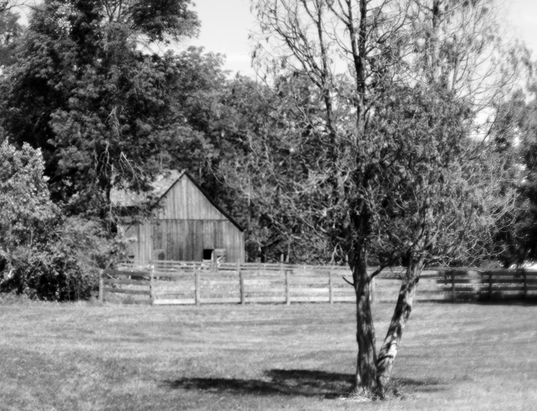 Hale Farms - 038 finished - resized.jpg