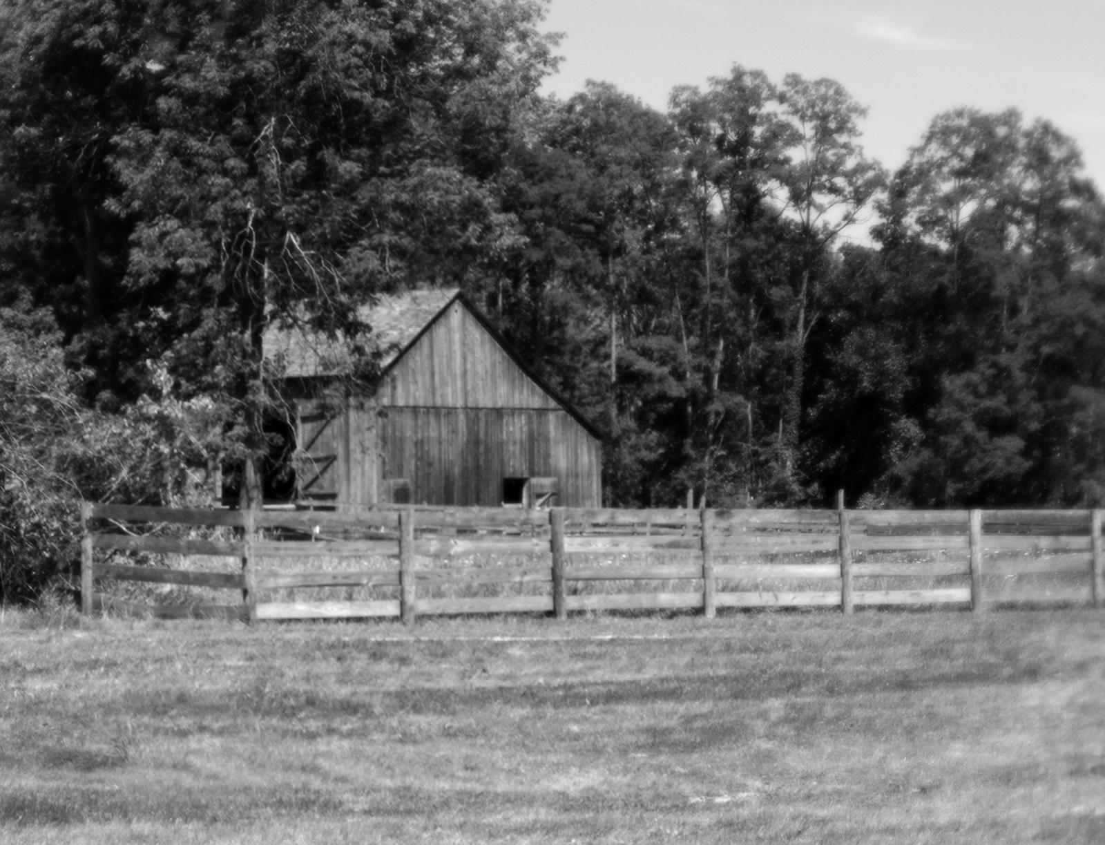 Hale Farms - 043 finished - resize.jpg