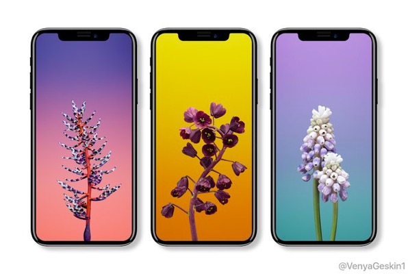 Iphone 8 With Ios 11 New Wallpapers Macrumors Forums