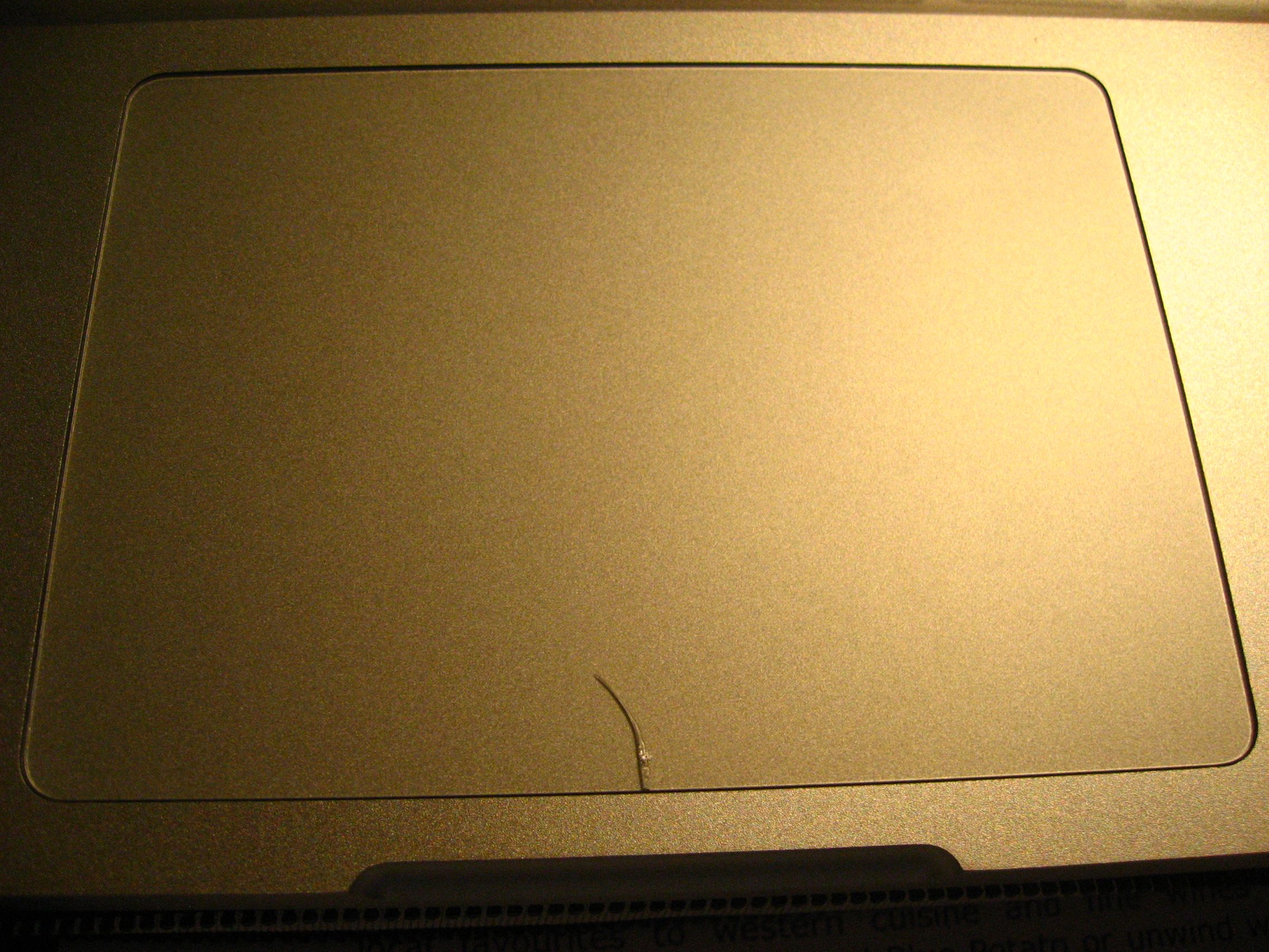 Help  Cracked My Macbook Pro trackpad  anyone eles?: | Page