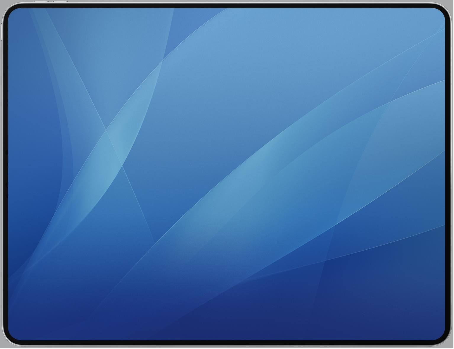 iPad X.png