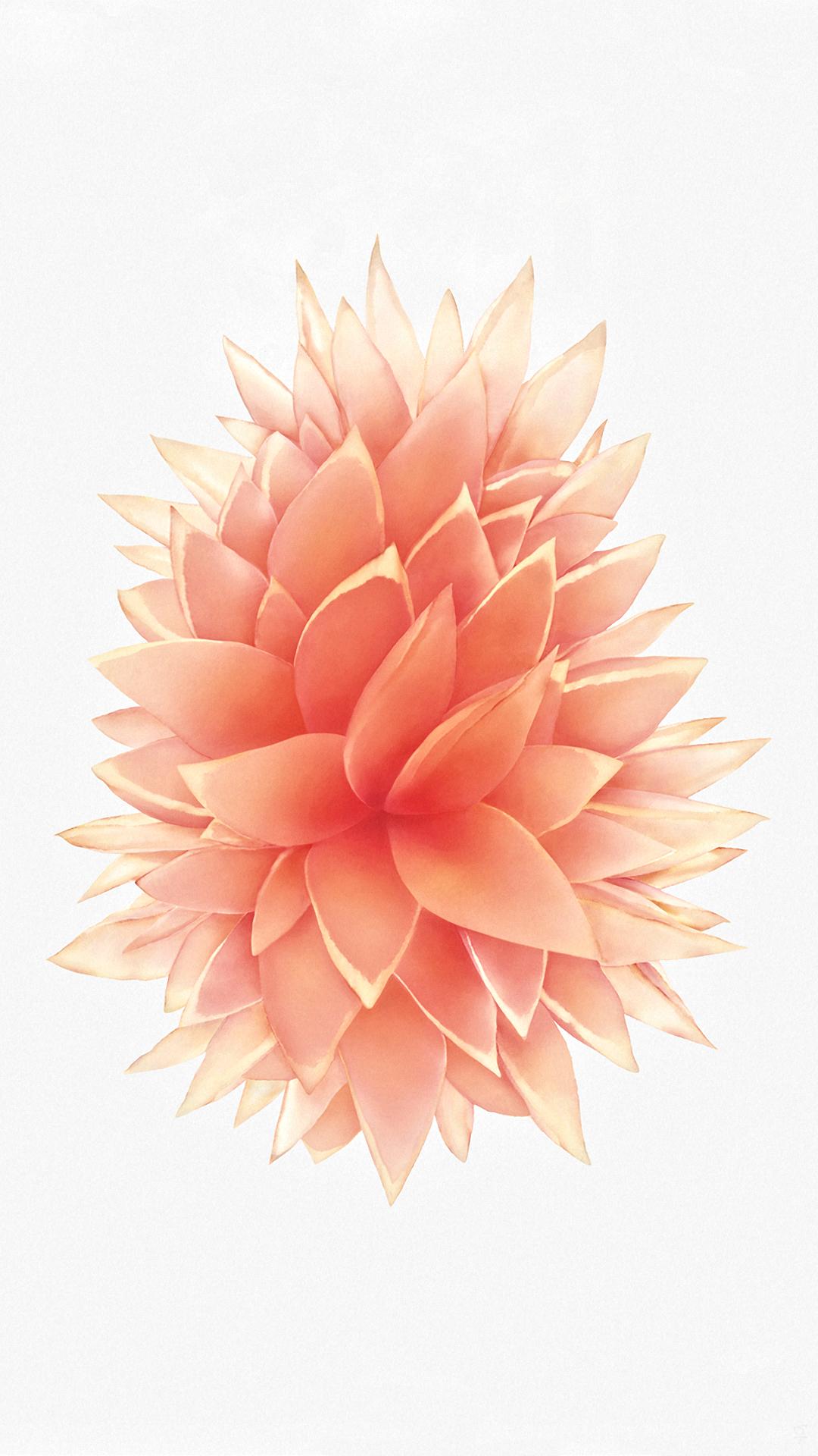 IPhone 6 7 Plus Wallpaper Request Thread
