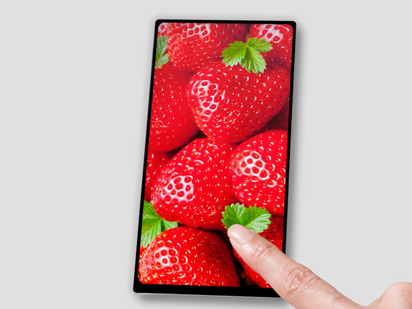 JDI-bezelless-display-840x630.jpg