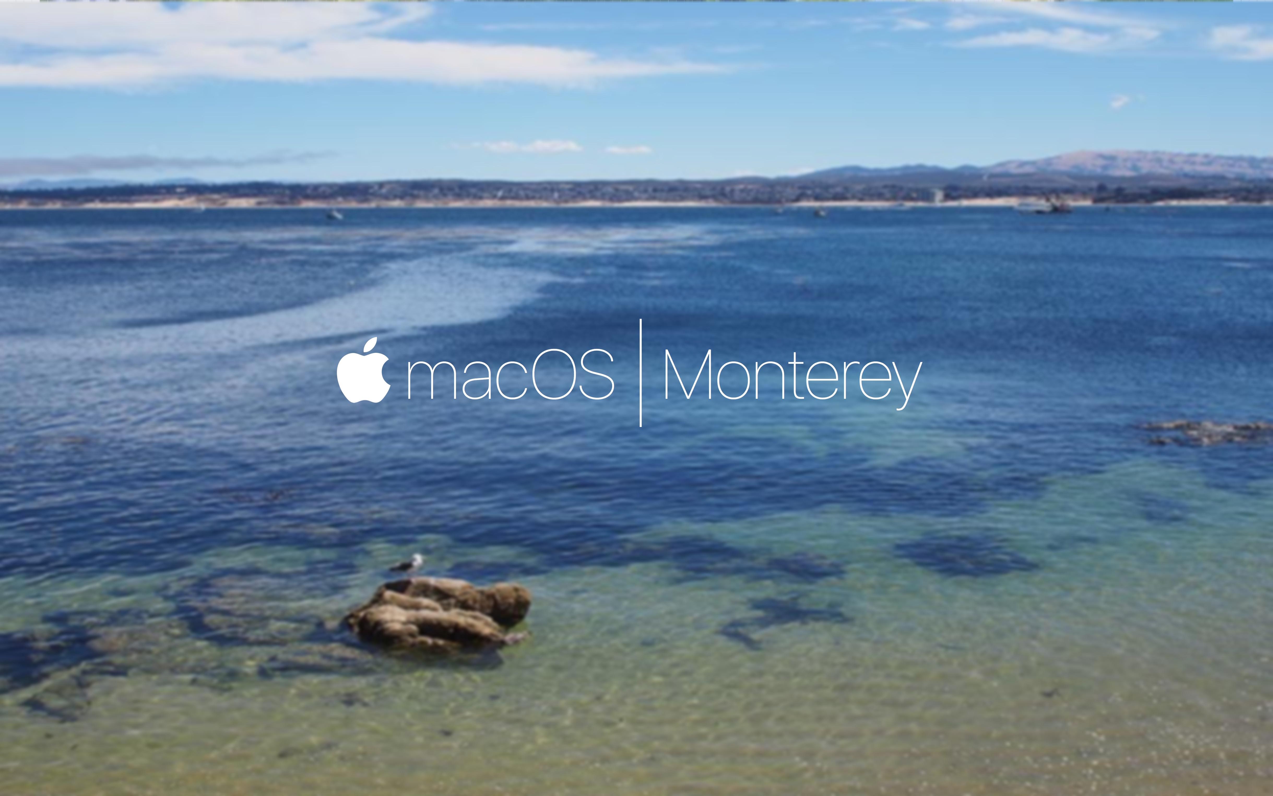 macOS | Monterey 3.jpg