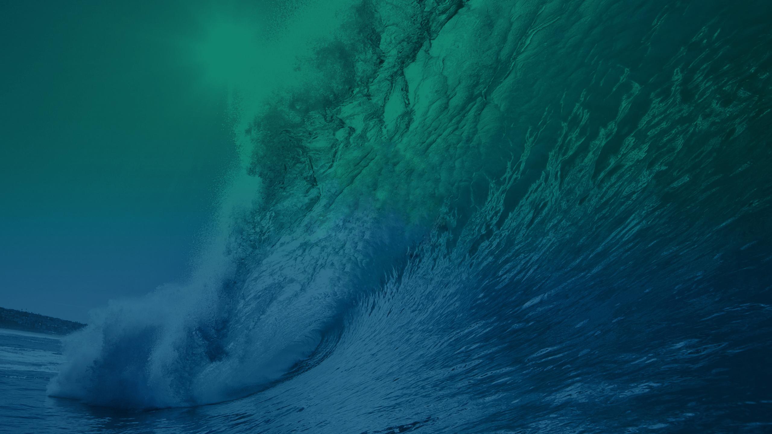 maverick wave