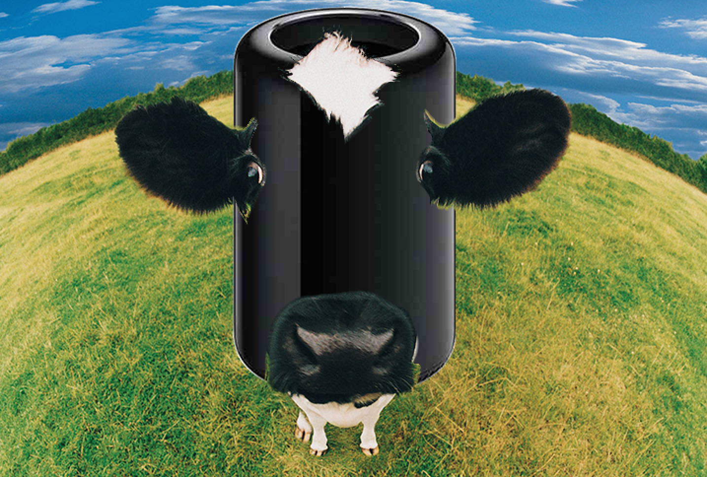 nMP Cow.png