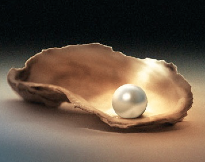 Pearl on Half Shell.png