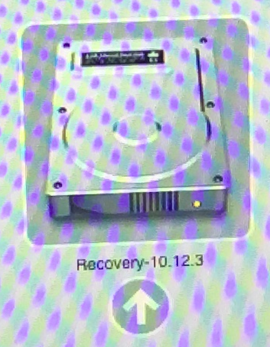 recovery10.12.3.png