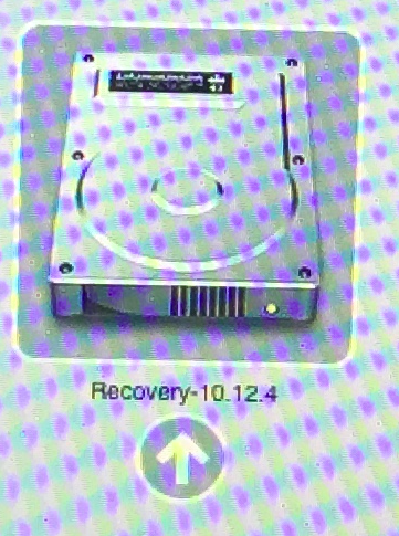 recovery10.12.4.png