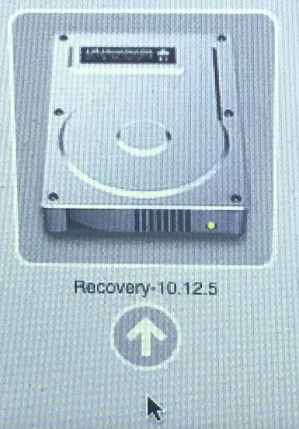 recovery10.12.5.jpg