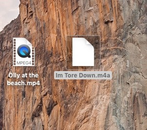 Screen icons.jpeg