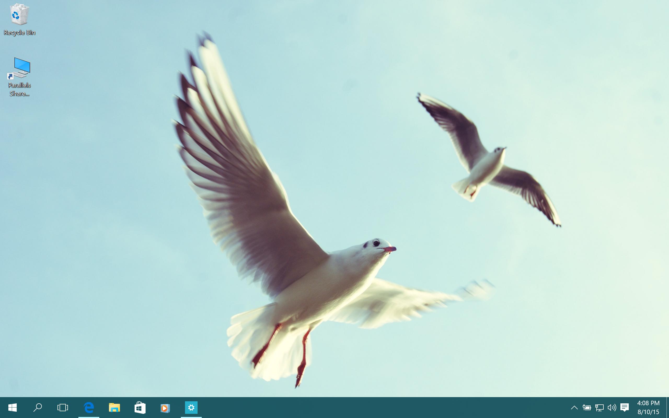 Screen Shot 2015-08-10 at 4.08.15 PM.png
