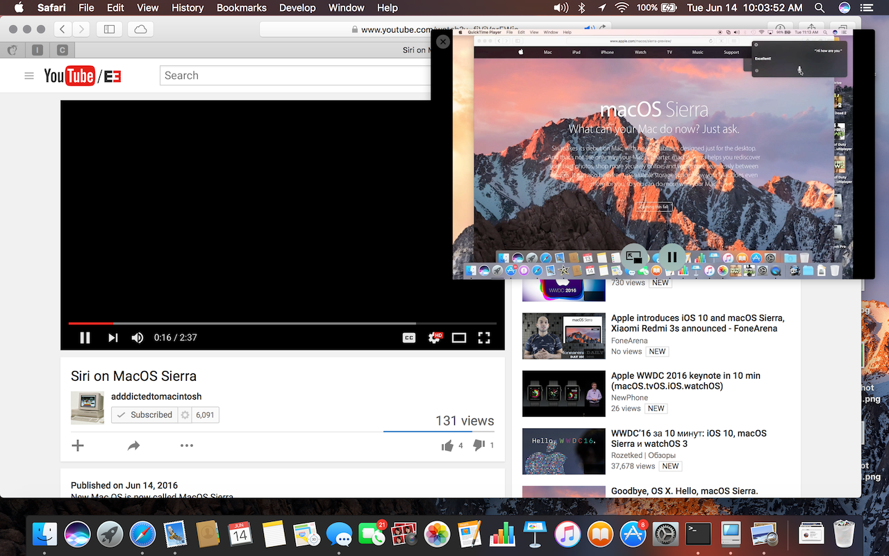 Sierra-Picture in Picture.png