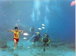 underwater-pic-fish.jpg