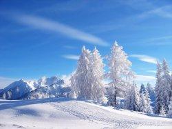 Winter_Landscape_1600.jpg