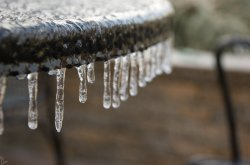 Frozen 5.jpg