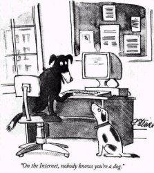 dogs-on-the-internet.jpg