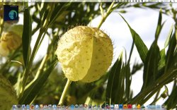 Desktop Ready For April -).jpg