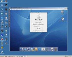 About Mac1.jpg
