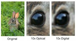 digital_zoom_vs_optical_zoom.jpg