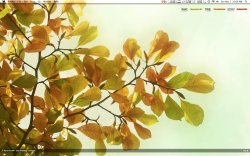 Screen shot 2009-11-01 at 12.06.11 AM.jpg