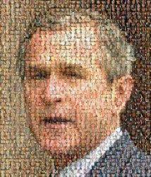 bush-front-small.jpg