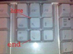 homeend.jpg