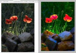 PicColours.jpg