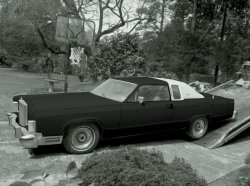 matte black car.jpg