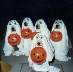 ghosts_at_door.jpg