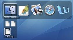 Leopard-Window-Switching.jpg