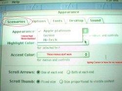 appearance-web.jpg