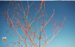 Screen shot 2010-12-01 at 7.40.48 PM.jpg