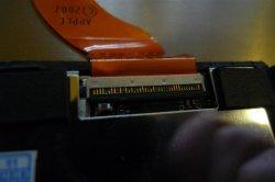 P1020545 (Large).JPG