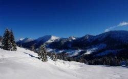 alpine snow.jpg