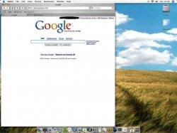 Google weird.jpg
