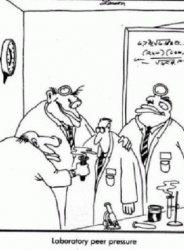 laboratory peer pressure.jpg