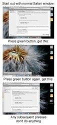 Safari Green Button copy.jpg