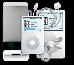 ipod-fifth-gen-access.jpg