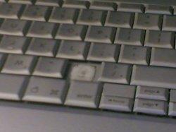20051104.jpg