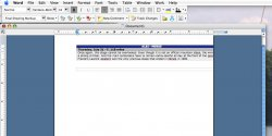 MS Word Screenshot.jpg