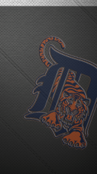 Leather Detroit Tigers.png