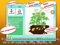 Baby Plants Vegetables1.jpg