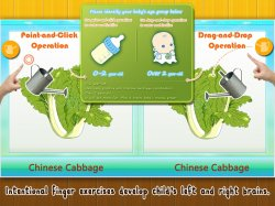 Baby Plants Vegetables3.jpg