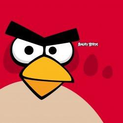 Angry Birds 02.jpg
